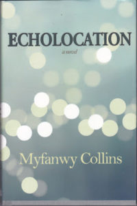 cover of echolocation by Myfanwy Collins