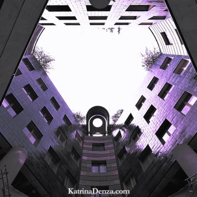 book reviews by editor Katrina Denza